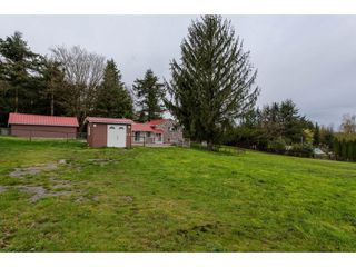 Photo 13: 1912 256 STREET in Langley: Otter District House for sale : MLS®# R2158322