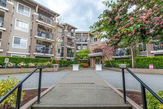 "Photo 23: 415 8915 202 Street in Langley: Walnut Grove Condo for sale in ""HAWTHORNE"" : MLS®# R2455863"