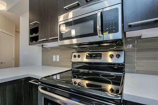 Photo 14: 302 10418 81 Avenue in Edmonton: Zone 15 Condo for sale : MLS®# E4199776