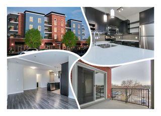 Photo 1: 302 10418 81 Avenue in Edmonton: Zone 15 Condo for sale : MLS®# E4199776