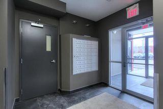 Photo 4: 302 10418 81 Avenue in Edmonton: Zone 15 Condo for sale : MLS®# E4199776