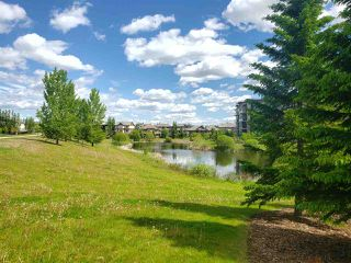 Photo 48: 4018 MACTAGGART Drive in Edmonton: Zone 14 House for sale : MLS®# E4201572