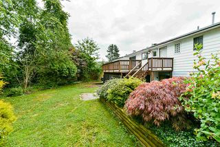Photo 36: 22871 PURDEY Avenue in Maple Ridge: East Central House for sale : MLS®# R2471478