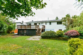 Photo 37: 22871 PURDEY Avenue in Maple Ridge: East Central House for sale : MLS®# R2471478