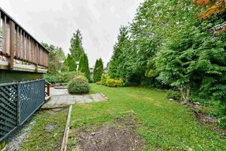 Photo 38: 22871 PURDEY Avenue in Maple Ridge: East Central House for sale : MLS®# R2471478