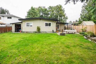 Photo 26: 11725 210 Street in Maple Ridge: Southwest Maple Ridge House for sale : MLS®# R2493237