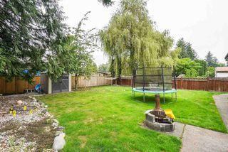 Photo 27: 11725 210 Street in Maple Ridge: Southwest Maple Ridge House for sale : MLS®# R2493237