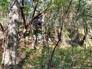 Photo 13: LOT 16 Ruxton Island in : Isl Ruxton Island Land for sale (Islands)  : MLS®# 854881
