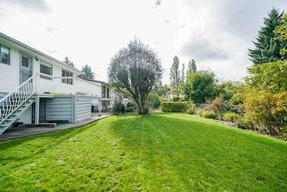 Photo 4: 951 DUTHIE Avenue in Burnaby: Sperling-Duthie House for sale (Burnaby North)  : MLS®# R2510954