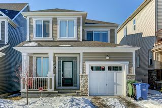 Main Photo: 118 Cityscape Way NE in Calgary: Cityscape Detached for sale : MLS®# A1058655
