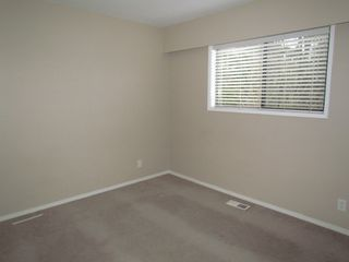Photo 5: B 32720 East Broadway in Abbotsford: Central Abbotsford Condo for rent