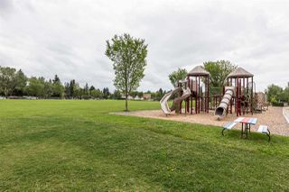 Photo 28: 9719 148 Street in Edmonton: Zone 10 House for sale : MLS®# E4165584