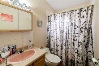 Photo 14: 11839 45 Street in Edmonton: Zone 23 House Fourplex for sale : MLS®# E4169212