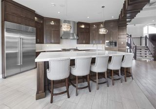 Photo 8: 3539 WATSON Point in Edmonton: Zone 56 House for sale : MLS®# E4188892