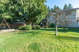 """Photo 19: 21101 43 Avenue in Langley: Brookswood Langley House for sale in """"Brookswood"""" : MLS®# R2446022"""