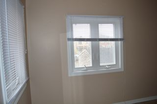 Photo 8: 205 Nairn Road in Toronto: Freehold for sale