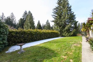 Photo 4: 3431 QUEENSTON AVENUE in Coquitlam: Burke Mountain House for sale : MLS®# R2141221