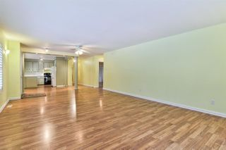 Photo 5: 7210 116 Street in Edmonton: Zone 15 House for sale : MLS®# E4182341