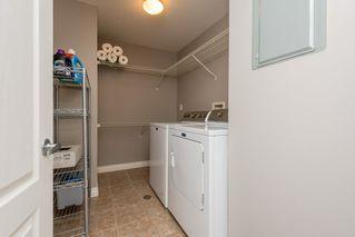 Photo 20: 203 10116 80 Ave in Edmonton: Zone 17 Condo for sale : MLS®# E4188601