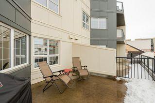 Photo 22: 203 10116 80 Ave in Edmonton: Zone 17 Condo for sale : MLS®# E4188601