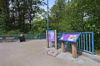 Photo 19: 316 2477 KELLY Avenue in Port Coquitlam: Central Pt Coquitlam Condo for sale : MLS®# R2498700