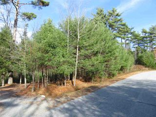Photo 1: Glasgow Street in Shelburne: 407-Shelburne County Vacant Land for sale (South Shore)  : MLS®# 202100005