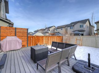 Photo 35: 1043 Kings Heights Road SE: Airdrie Detached for sale : MLS®# A1057366