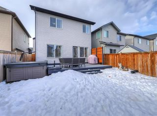 Photo 37: 1043 Kings Heights Road SE: Airdrie Detached for sale : MLS®# A1057366