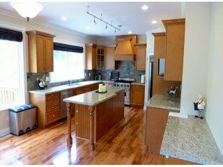 Photo 6: 16475 93B Street in Surrey: Fleetwood Tynehead House for sale : MLS®# F1400262