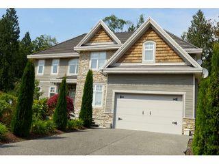Photo 1: 16475 93B Street in Surrey: Fleetwood Tynehead House for sale : MLS®# F1400262
