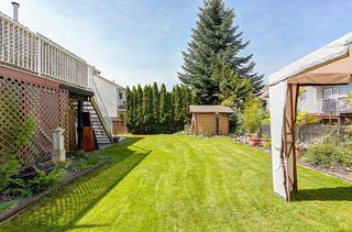 Photo 20: 32691 KUDO DRIVE in Mission: Mission BC House for sale : MLS®# R2063757