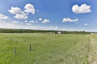 Photo 29: 14221 Big Hill Springs RD in Rural Rocky View County: Rural Rocky View MD House for sale : MLS®# C4190749