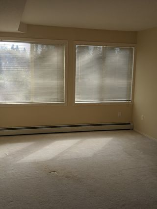 Photo 6: 235, 78 McKenney Avenue in St. Albert: Condo for rent