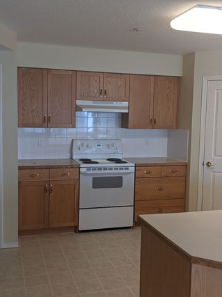 Photo 3: 235, 78 McKenney Avenue in St. Albert: Condo for rent