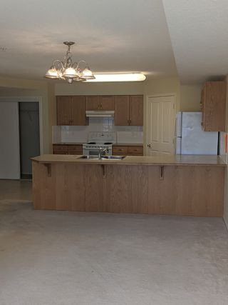 Photo 2: 235, 78 McKenney Avenue in St. Albert: Condo for rent
