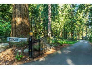 Photo 31: 12929 CRESCENT ROAD in Surrey: Crescent Bch Ocean Pk. House for sale (South Surrey White Rock)  : MLS®# R2456351