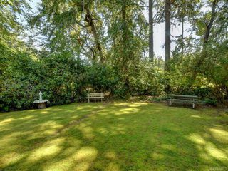 Photo 13: 3986 Telegraph Bay Rd in Saanich: SE Queenswood Single Family Detached for sale (Saanich East)  : MLS®# 844573