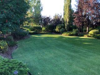 Photo 47: 15 RIVERRIDGE Road: Rural Sturgeon County House for sale : MLS®# E4224731