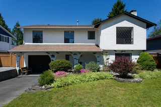 "Photo 1: 1077 GLADE Court in Port Coquitlam: Birchland Manor House for sale in ""BIRCHLAND MANOR"" : MLS®# V1073071"