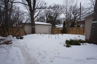 Photo 15: 267 Clare Avenue in : Riverview Single Family Detached for sale