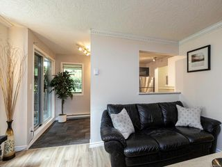 Photo 11: 109 898 Vernon Ave in : SE Swan Lake Condo for sale (Saanich East)  : MLS®# 857244