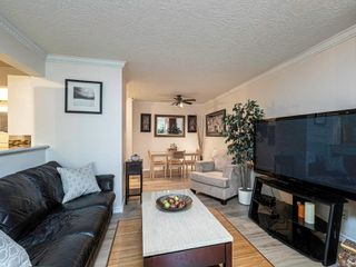 Photo 8: 109 898 Vernon Ave in : SE Swan Lake Condo for sale (Saanich East)  : MLS®# 857244