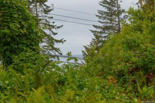 Photo 37: 8510 West Coast Rd in Sooke: Sk West Coast Rd Single Family Detached for sale : MLS®# 843577