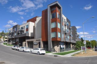 Photo 31: 409 93 34 Avenue SW in Calgary: Parkhill Apartment for sale : MLS®# A1029578