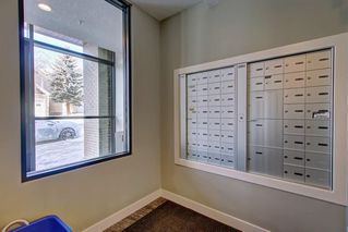 Photo 28: 409 93 34 Avenue SW in Calgary: Parkhill Apartment for sale : MLS®# A1029578