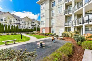 "Photo 18: 219 15956 86A Avenue in Surrey: Fleetwood Tynehead Condo for sale in ""Ascend"" : MLS®# R2397696"