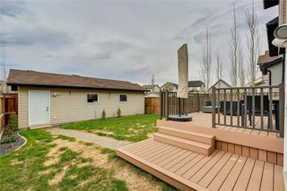 Photo 35: 4474 ELGIN Avenue SE in Calgary: McKenzie Towne Detached for sale : MLS®# C4271475