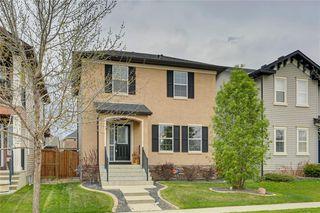 Photo 1: 4474 ELGIN Avenue SE in Calgary: McKenzie Towne Detached for sale : MLS®# C4271475