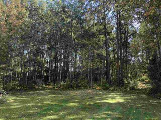 Photo 41: 27 54006 RGE RD 274: Rural Parkland County House for sale : MLS®# E4180238