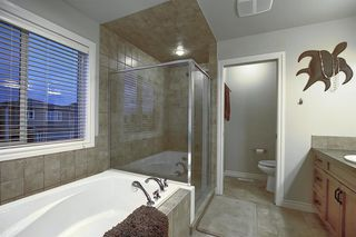 Photo 24: 1009 Prairie Springs Hill SW: Airdrie Detached for sale : MLS®# A1042404